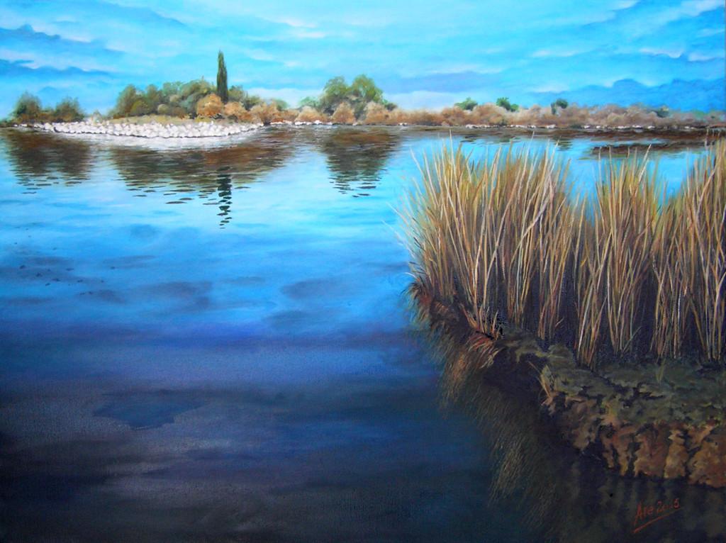 Tranquillità in laguna - Olio su tela Gallery 50x70