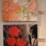 Roia / Durisotti - Rose rosse