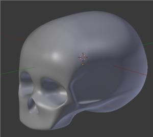 Abbozzo del cranio